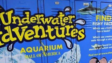 Advertisement for an aquarium on school lockers. Courtesy of Creative Commons.