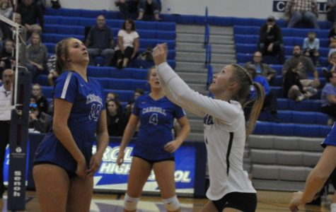 Regional title eludes volleyball team
