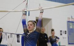 Gymnasts chalk up season rebuild