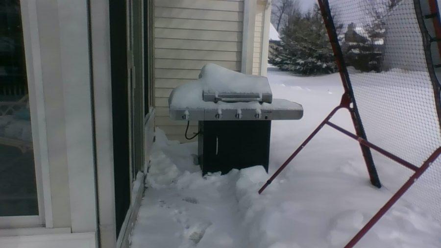 Snowy Grill