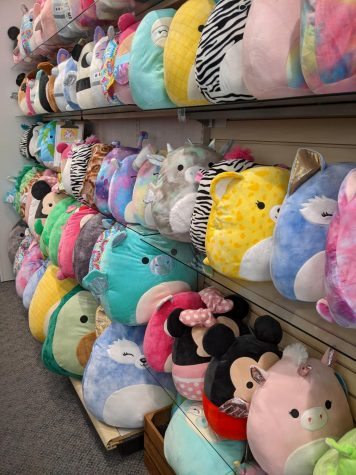 Squishmallows storm the market